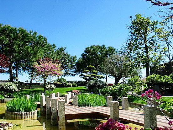 Le comte de nice en images le pele mele le jardin for Le jardin japonais monaco